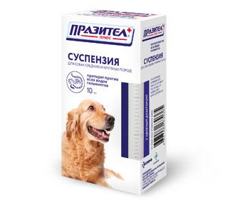 суспензия от глистов у собак