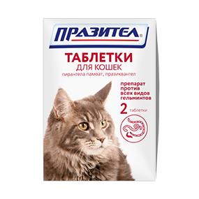 Что дать против глистов коту