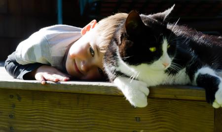 если дома кошка как не заразиться глистами от
